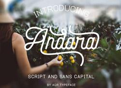 11月这几款漂亮的英文字体可免费商用