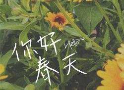 春日记 · 什么字体才能配得上你的小清新气质