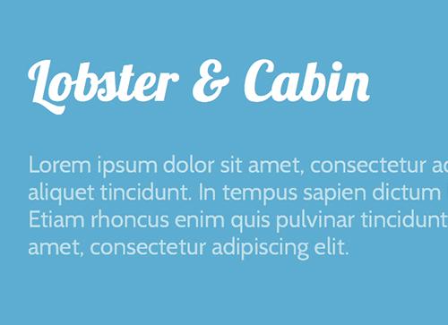10个漂亮的可免费使用的网站字体-谷歌字体