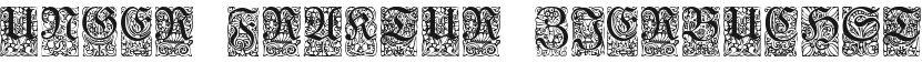 Unger-Fraktur Zierbuchstaben的封面图
