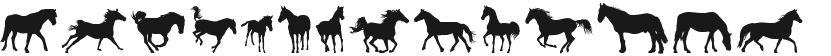 DJ Horses 1的封面图
