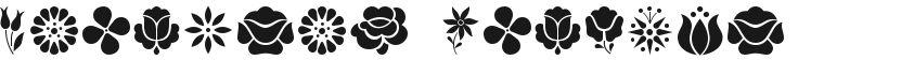 Kalocsai Flowers的封面图