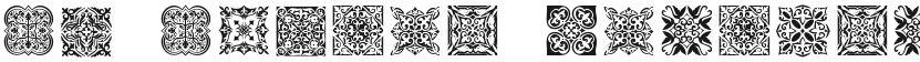 SL Square Ornaments的封面图