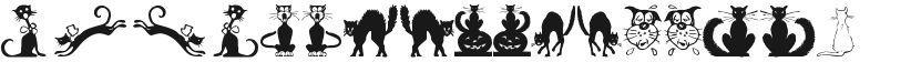Border Cats的封面图