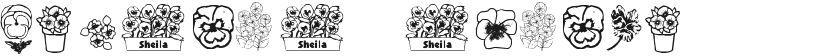 Pansies 4 Sheila的封面图