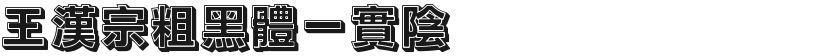 王汉宗粗黑体一实阴的封面图