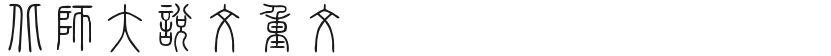 北师大说文重文的封面图