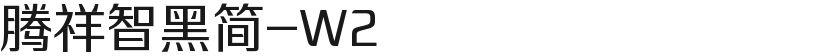 腾祥智黑简-W2的封面图