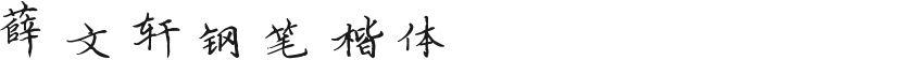 薛文轩钢笔楷体的封面图