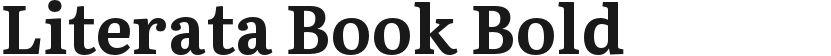 Literata Book Bold的封面图