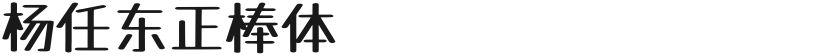 杨任东正棒体的封面图