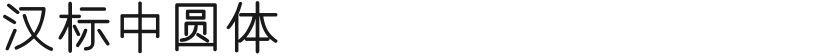 汉标中圆体的封面图