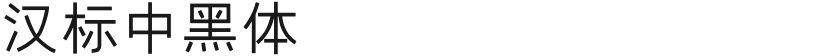 汉标中黑体的封面图